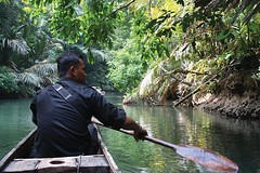 #NationalSuperHeroDay These guys are true heroes! Asian Rhino Protection Units spend a minimum of 15-days per month in the field. They use boats to patrol patrol through miles of palm and mangrove forests on the Way Kanan river. They are experts on the rh