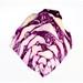 red cabbage by primemundo