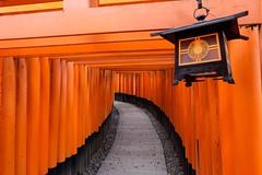 Fushimi Inari Taisha I