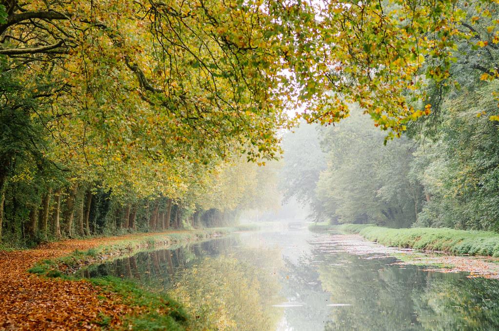Carnet de voyage en Sologne - Brume matinale sur le canal de Berry