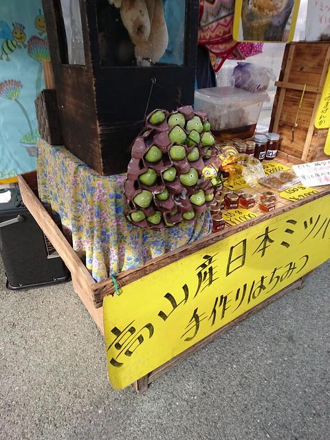 travel to Hida-Takayama 62