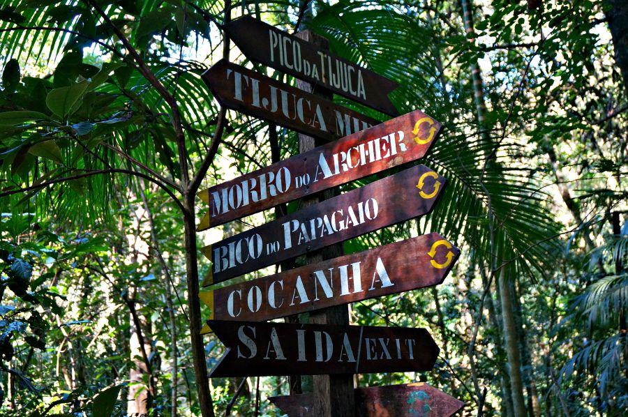 Pico de Tijuca Trail