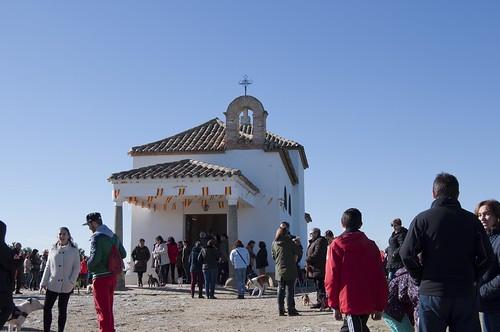 Fiesta de San Antón