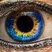 1 eye by www.fabienrouire.com