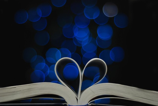 books - Lexi Wheeler - Boka, blue christmas lights in a dark room