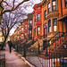 Sunset Park Brooklyn Brownstones by Vivienne Gucwa