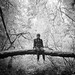 Hasselblad 503CX - BW - IlfordDelta100 - Jedediah Smith Redwoods State Park VI by Gustaf_E