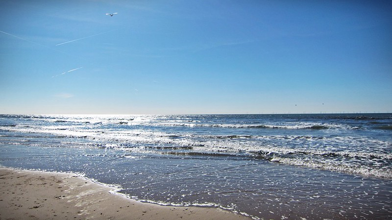 Goldengelchen-2015-Jahresrückblick-Egmond aan Zee