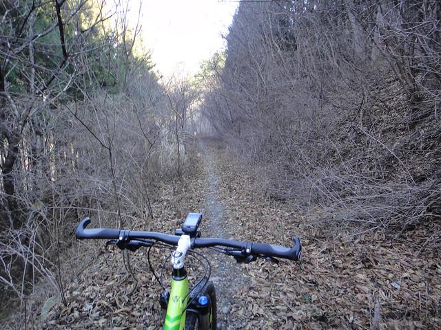 2016.01.04 Trail