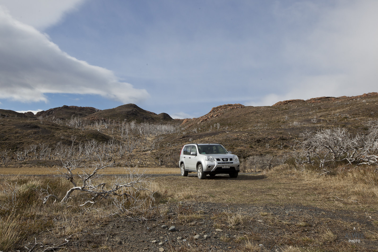 Driving the X-Trail