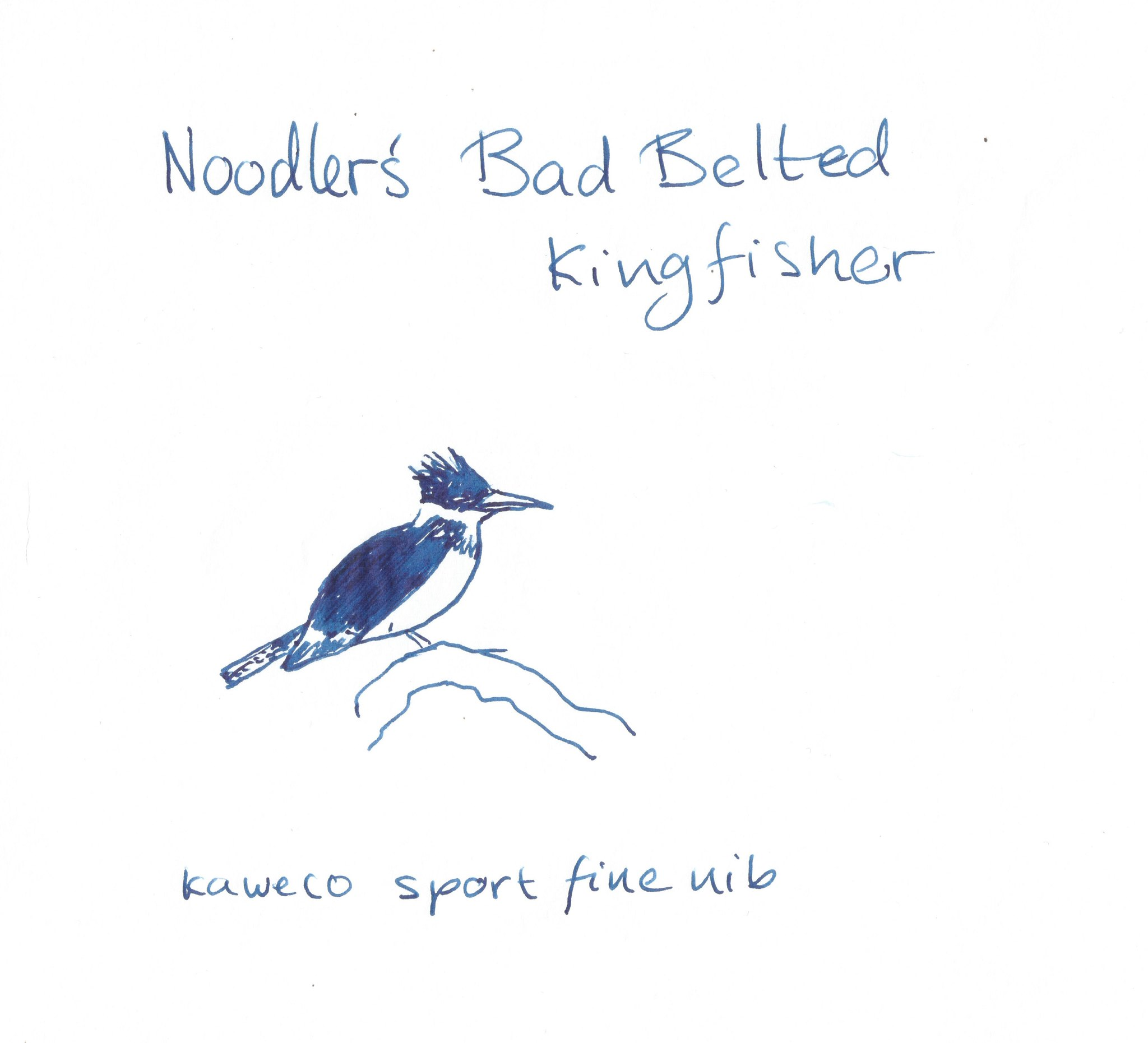 Bad Belted Kingfisher