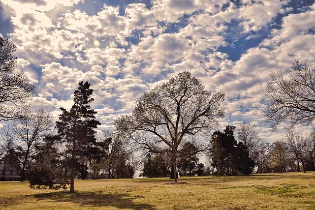 Woodward Park Sky