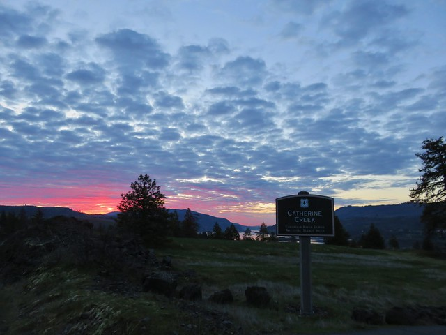 Sunrise from the Catherine Creek Trailhead