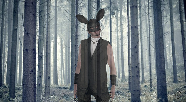 Rabbit-ghost-in-the-woods