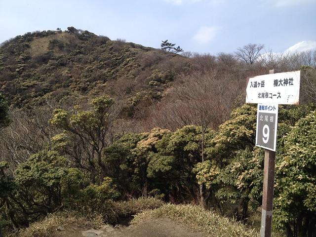 入道ヶ岳 北尾根 通報ポイント9