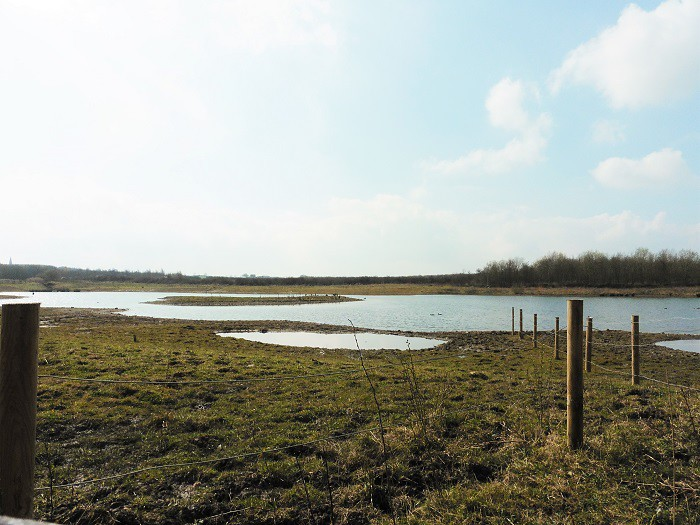 Rainton Meadows