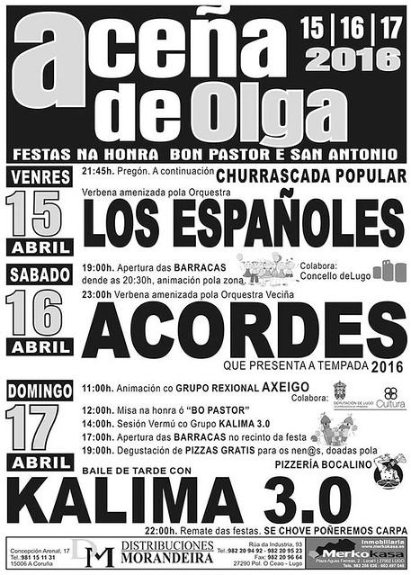 Lugo 2016 - Festas do Bon Pastor e Santo Antón en Aceña de Olga - cartel