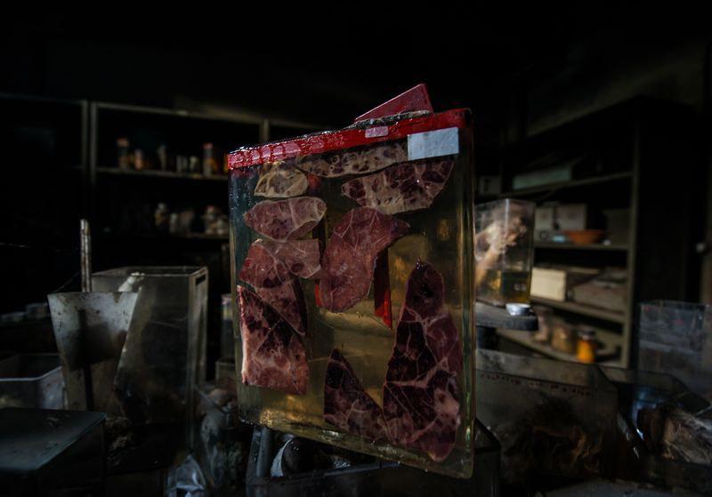 驚魂比利時「廢棄獸醫學院」福馬林的怪誕美學18