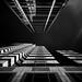 Future Perspective by Darren LoPrinzi
