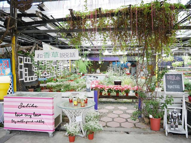 台北一日遊景點推薦台北花卉村 (3)