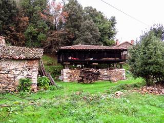 Camino Primitivo - 1 Oviedo-Grado (82)