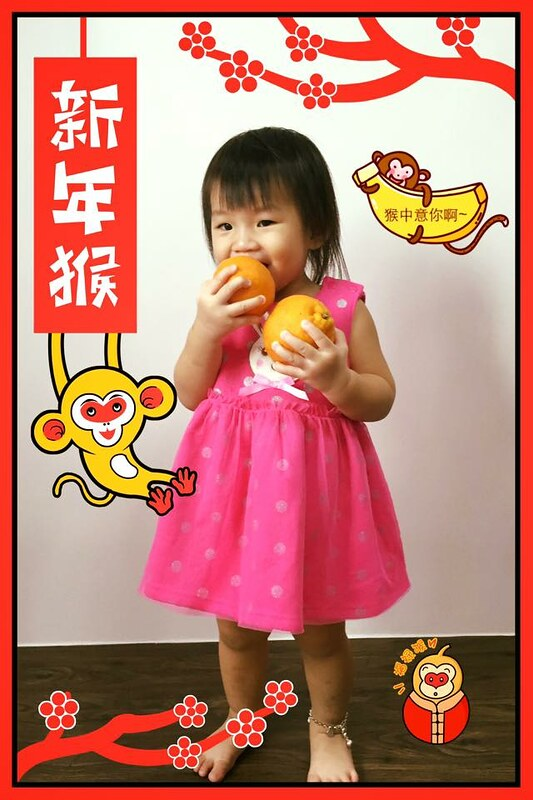 chanelle cny 2016