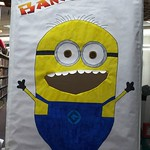 Minions Winter Reading Party