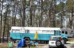 Bus camper 3-19-2016