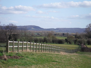 Pulpit Hill, Chilterns, from field in Dinton