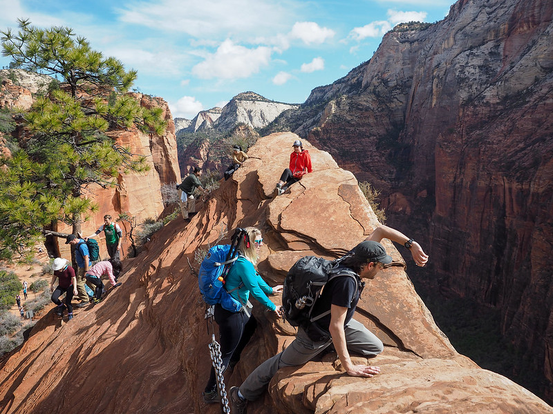 Scout Lookout in Zion National Park