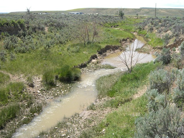 Photo of Muddy Creek in Wyoming
