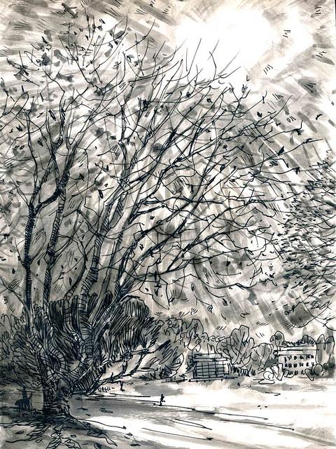 Sketchbook #94: Winter Trees (Long)