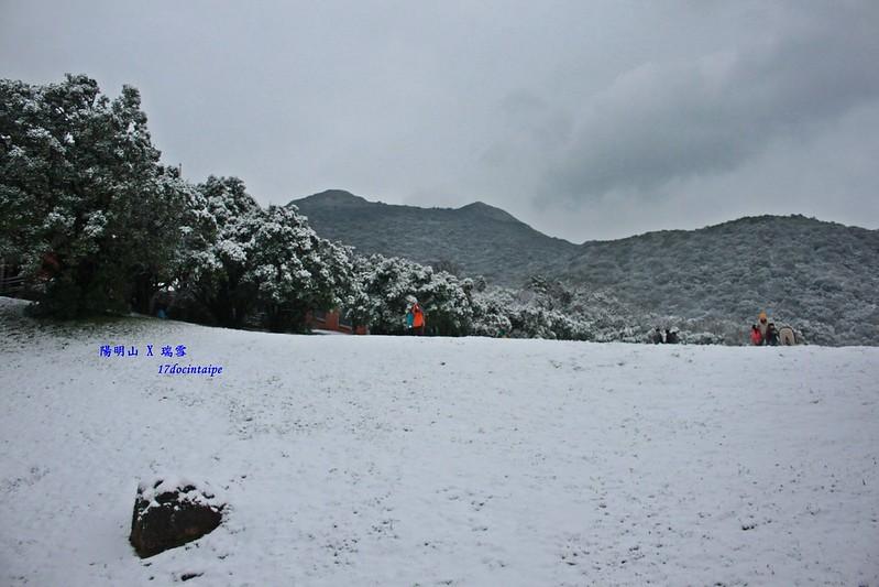 2016-台北陽明山-瑞雪-難得一見的雪白山景-17度C隨拍 (87)