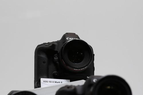z1M0A2033