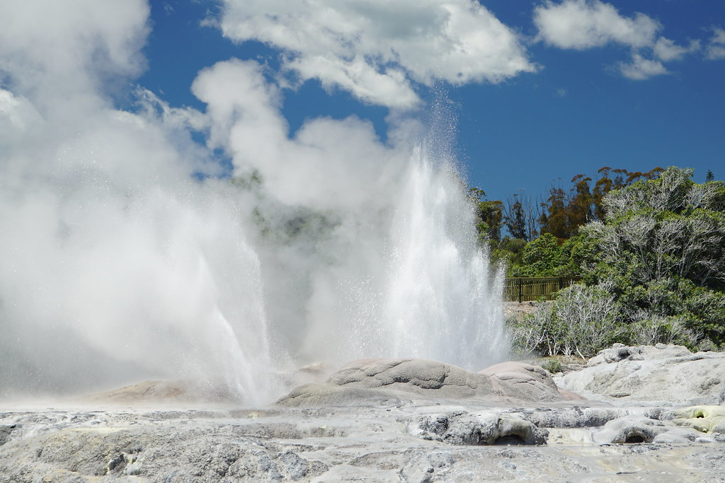 Rotorua Sites