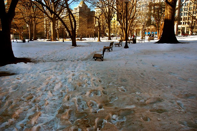Unshoveled sidewalk through Franklin Square Park   Photo by Emily Kaye