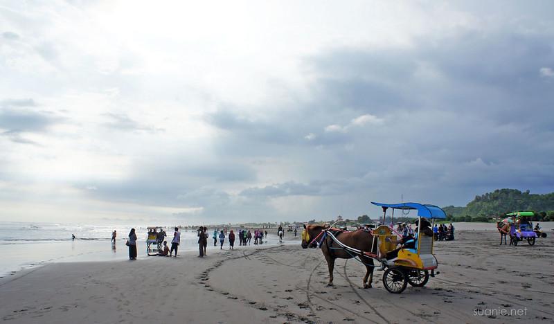 Yogyakarta, Indonesia - horse on Parangtritis beach