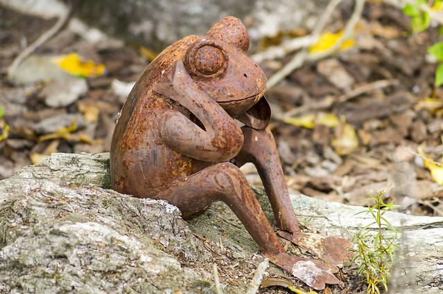 Rusty Frog