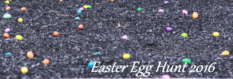 egg hunt 2016 (1)