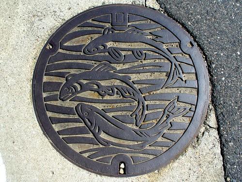Kawashima Gifu, manhole cover 2 (岐阜県川島町のマンホール2)