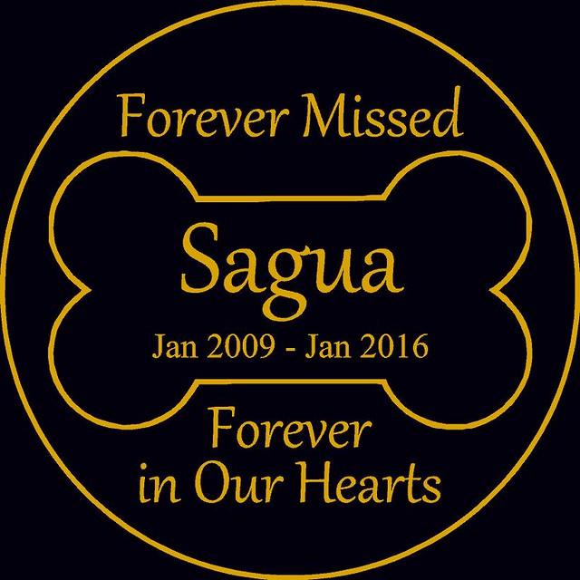 Stone for Sagua