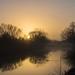 Sunny foggy Saturdaymorning by Anneke van Beek