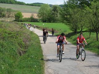 Vinska biciklijada