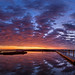 PanoFromFilesIMGP7211-22(AllFiles)Step12SpotSMALL-L by Ed Hurst, Spiffing Pics (410k+ views - thanks!)