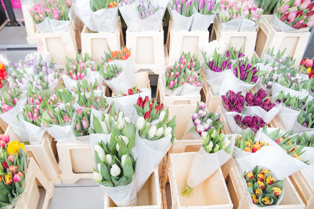 Rotterdam flowers market