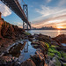 """Creative Display of the Bay""- San Francisco, CA by Nicholas Steinberg photography"