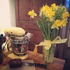 Yellow flowers are my favorite! #valentinesday #daffodils #spring #yellow #yellowkitchen