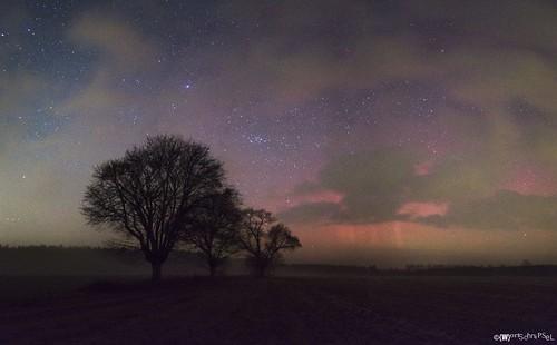 Northern Lights Schorfheide