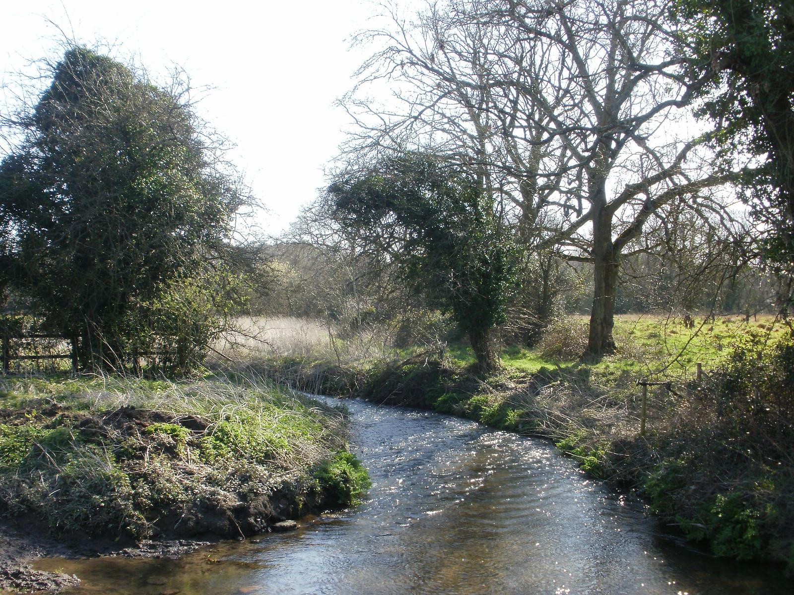 River Wey OLYMPUS DIGITAL CAMERA