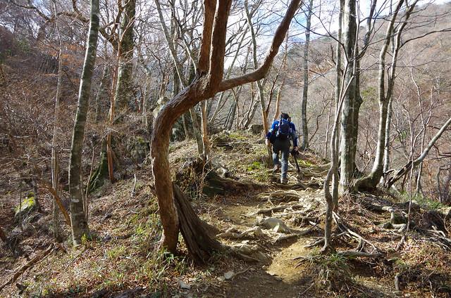 20141123-大峰山八経ヶ岳(Saku)-0008.jpg